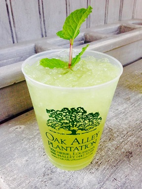 Mint_julep_oak_alley